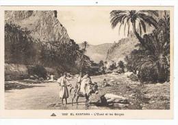 EL  Kantara   L'oued Et  Les Gorges - Algeria