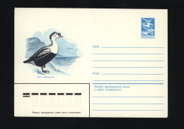 USSR 1983 Postal Cover Bird King Eider  (294) - Other
