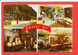 41 CHISSAY En TOURAINE Cp Multivues Distillerie Fraise D ' Or      F 4.541 Leconte - France