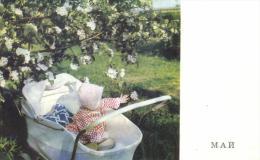 95648 - Russie  Fantaisie      Enfant Dans Un Landeau - Russie