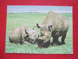 "KENYA - WILDLIFE OF KENYA _  "" RHINOCEROS "" - Kenia"