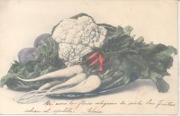 NABOS RABANITOS COLIFLOR COLLIFLOWER REMOLACHA ACELGA BETARRAGA SIGNEE ELOISA CPA 1904 EX COLECCION PETTIROSSI - Landbouw