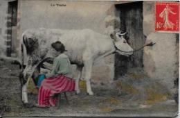 CPA Agriculture Ferme Paysans Culture La Vie Aux Champs Circulé Vache - Cultures