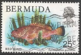 Bermuda. 1978 Wildlife, 25c Used. SG 396 - Bermuda