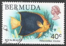 Bermuda. 1978 Wildlife, 40c Used. SG 398 - Bermuda