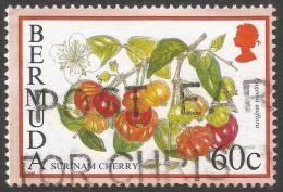 Bermuda. 1994 Flowering Fruits. 60c Used. SG 711A - Bermuda