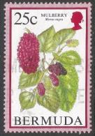 Bermuda. 1994 Flowering Fruits. 25c Used. SG 798 - Bermuda