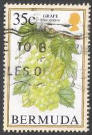 Bermuda. 1994 Flowering Fruits. 35c Used. SG 709A - Bermuda