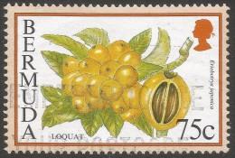 Bermuda. 1994 Flowering Fruits. 75c Used. SG 802 - Bermuda