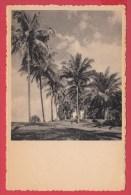 CPA - CONGO * COQUILHATVILLE * (Mbandaka)*Le Long Du Fleuve * Ed. Ph. Dandoy * VOIR Scan Recto / Verso - Kinshasa - Léopoldville