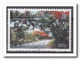 Kaaiman Eilanden 1991, Postfris MNH, Trees - Kaaiman Eilanden