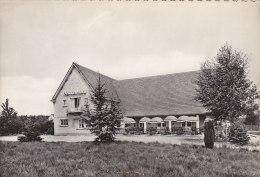 Belgique - Waasmunster - Hotel Restaurant Denneland - Cachet 1953 - Waasmunster