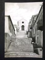 SARDEGNA -SASSARI -ARZACHENA -F.G. LOTTO N°514 - Sassari