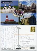 United Kingdom - Farne Islands - Royaume-Uni