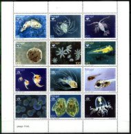 PORTUGAL, 1998, EXPO, MARINE FAUNA, PLANCTON, AF#B.193, MNH - Marine Life