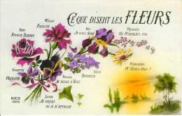 Ce Que Disent Les Fleurs - Fancy Cards
