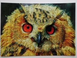 OWL - 2 PCs Lot - Modern Art Postcard  - Eagle-owl - Oiseaux