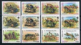 1992- SOMALIA- WWF.-FAUNA-ANIMALS-12 VAL.. -M.N.H.-LUXE ! ! - Somalia (1960-...)