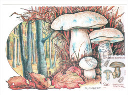 CPSM CHAMPIGNON GYROPORUS CYANESCENS INDIGOTIER  DESSIN P LAMBERT  1 ER JOUR MAXIMUM TIMBRE 1987 FRANCE - Mushrooms