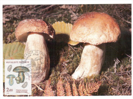 CPSM CHAMPIGNON GYROPORUS CYANESCENS INDIGOTIER  PHOTO  1 ER JOUR MAXIMUM TIMBRE 1987 FRANCE - Mushrooms