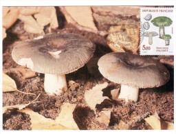 CPSM CHAMPIGNON LE PALOMET RUSSULA VIRESCENS  PHOTO  1 ER JOUR MAXIMUM TIMBRE 1987 FRANCE - Mushrooms