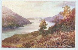 Loch Lomond From Above Tarbet - Art Colour - Scotland