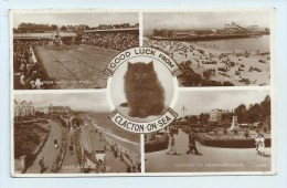 Clacton - Multiview With Black Cat - Clacton On Sea