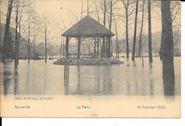 Aywaille - Le Parc - Inondé Le 10 Février 1909 - DESAIX. - Aywaille