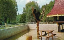 Canada Goldilocks and The Three Bears Stroybook Gardens London O