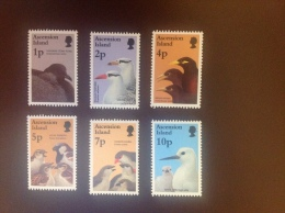 Ascension Birds And Their Young 1996 6v MNH - Sin Clasificación