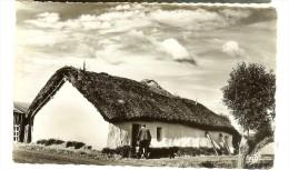 Cap 1565 - Au Pays Des Monts, Bourrine Vendéenne - Recto Timbre Armoirie Alger , Cachet, Flamme 1961 - Non Classés