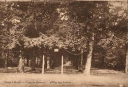 BELGIQUE - LIMBOURG - LEOPOLDSBURG - BOURG-LEOPOLD - Camp De Béverloo, Allée Des Soupirs. - Leopoldsburg (Camp De Beverloo)
