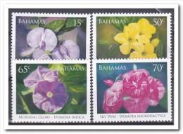 Bahamas 2006, Postfris MNH, Flowers - Bahama's (1973-...)