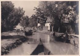 BASARABIA : VÂLCOV / VILKOVO / VYLKOVE - CARTE VRAIE PHOTO / REAL PHOTO POSTCARD - ANNÉE / YEAR ~ 1930 (t-945) - Ukraine