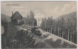 Station Drangetal - Train - Stazioni Con Treni