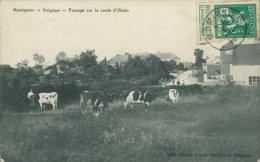 BELGIQUE MOMIGNIES / Paysage Sur La Route D'Ohain / - Momignies