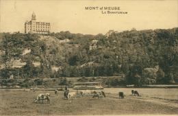 BELGIQUE MONT SUR MEUSE / Le Sanatorium / - Belgique