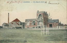 BELGIQUE MOUSCRON / Villa Macelle-Achille / CARTE COULEUR - Mouscron - Moeskroen