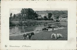 BELGIQUE REMOUCHAMPS / L'Amblème / CARTE GLACEE - Belgique