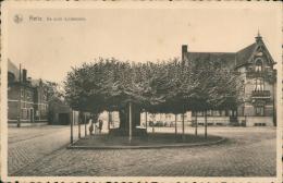 BELGIQUE RETIE / De Oude Lindeboom / - Retie
