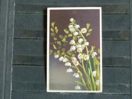 F02 - Illustrateur - Fleurs - Muguet - 1954 - Illustrateurs & Photographes