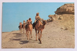 CAMEL CARAVAN, 1979 With Bahrain 150 Fils Stamp - Bahreïn