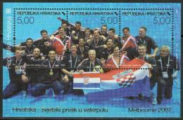 Croatia 2007 Water Polo MNH Souvenir Sheet