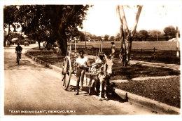 Z Z -484  /     C P A -  ANTILLES TRINIDAD -EST INDIAN CART  TRINIDAD B.W.J. - Trinidad