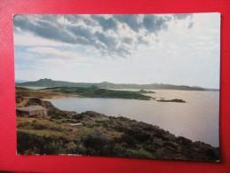 SARDEGNA - COSTA SMERALDA - GIOCO DI LUCI A BAJA SARDINIA - Viaggiata 1966 - Olbia