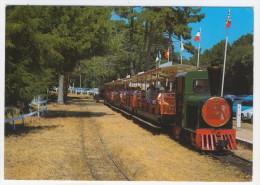 17 - Île  D'Oléron     Petit Train Touristique De Saint-Trojean - Ile D'Oléron
