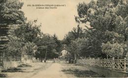 Dép 44 - St Brevin L'Océan - Saint Brevin L'Océan - Avenue De Courlis - 2 Scans - état - Saint-Brevin-l'Océan