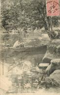 Dép 44 - Animaux - Chiens - Chien - Dogs - Dog - Barque - Aigrefeuille Sur Maine - Les Bords De La Maine - état - Aigrefeuille-sur-Maine
