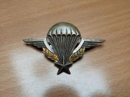 INSIGNE. BREVET PARA .EPOQUE ALGERIE. NUMEROTE. DRAGO ROMAINVILLE. - Militaria