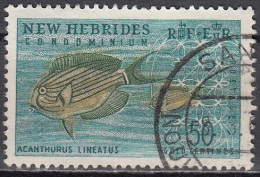 Nouvelles Hebrides 1963 Michel 202 O Cote (2005) 2.00 Euro Poisson Chirurgien Rayé Cachet Rond - Légende Anglaise
